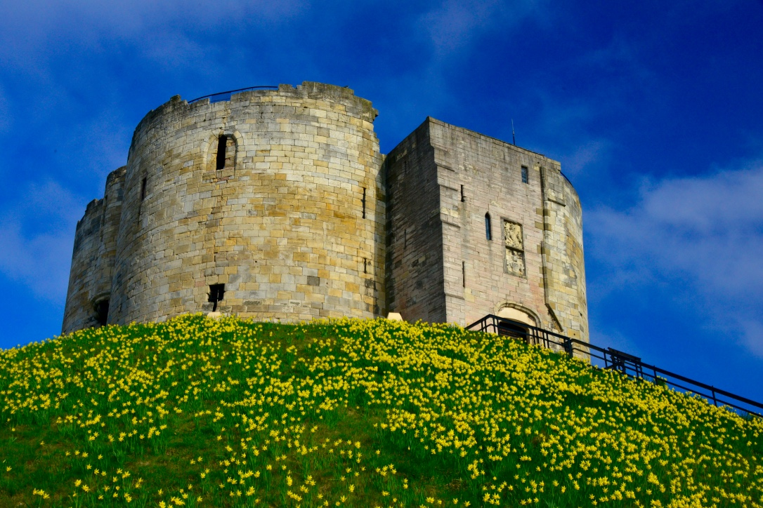 Walk in centre York with YORKTOUR